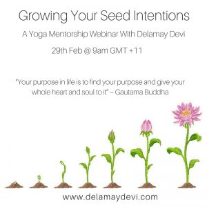 Growing Your Seed Intentions_soundcloud