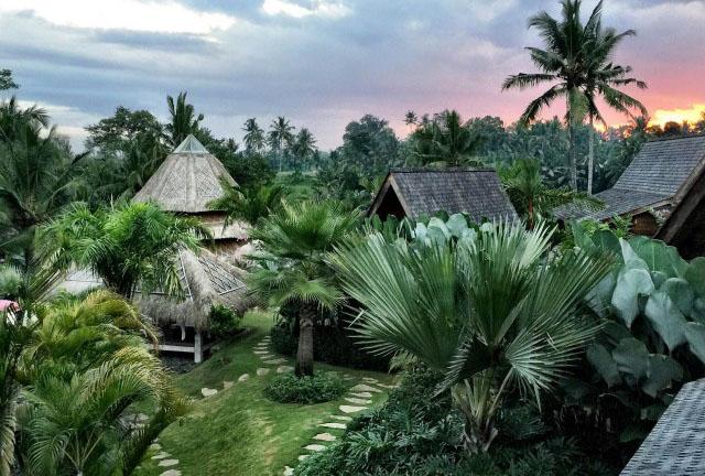 Movement Medicine Yoga Retreat Bali 2019 Delamay Devi Yoga